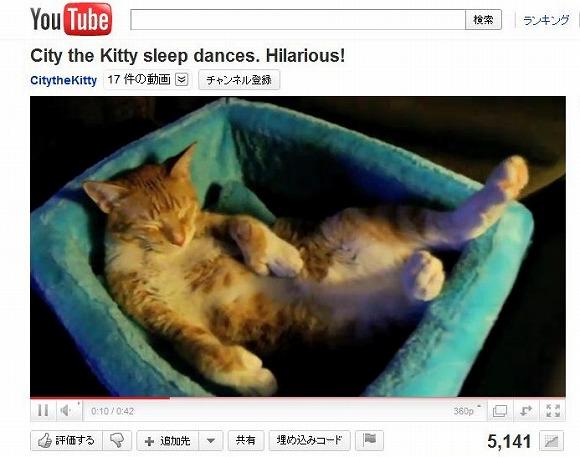 ぐっすり眠っているネコちゃん、なぜか足だけがプルプルプル……