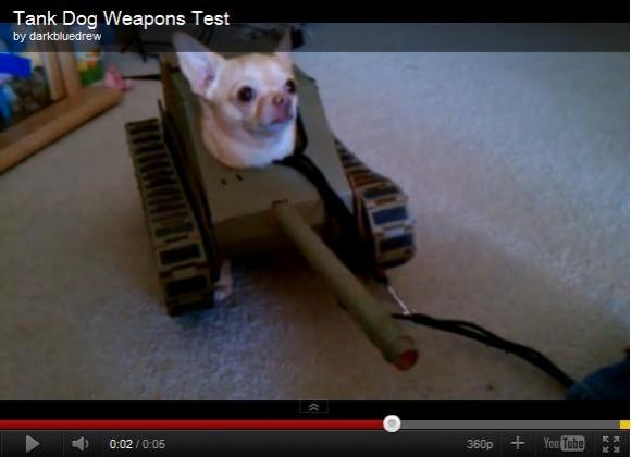 可愛いけどちょっと気の毒…戦車のかぶりものを着たチワワ