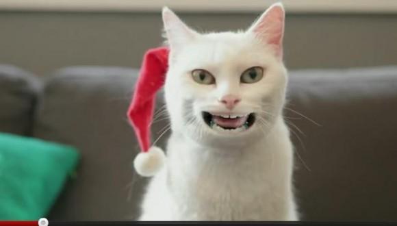 ひとりクリスマスはこの動画で乗り切れ! 人間の口を持つ珍妙なネコがクリスマスソングをシュールに歌うぞ
