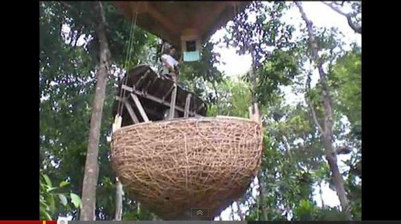 グラグラ揺れそうな宙吊りレストラン発見! ウェイトレスは命綱着用で木々を移動(タイ)