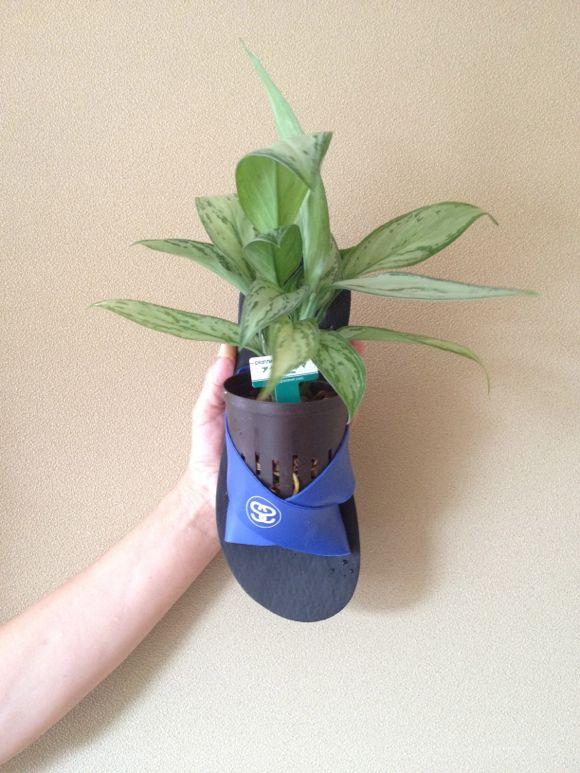 たった9秒で 観葉植物を超オシャレにする方法!