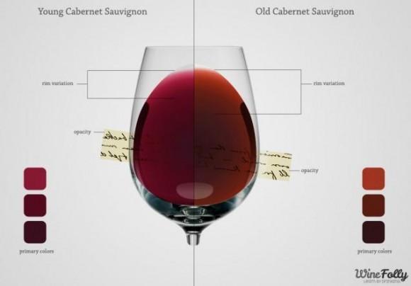 これであなたも赤ワイン通! 赤ワインの見方を知ればワインがもっと楽しくなるよー!