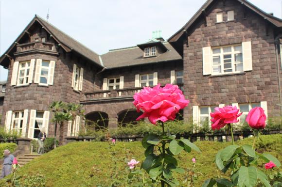 【公園へいこう♪】乙女系バラ園「旧古河庭園」は今バラが最盛期☆ 洋館の見学もおすすめですぞ