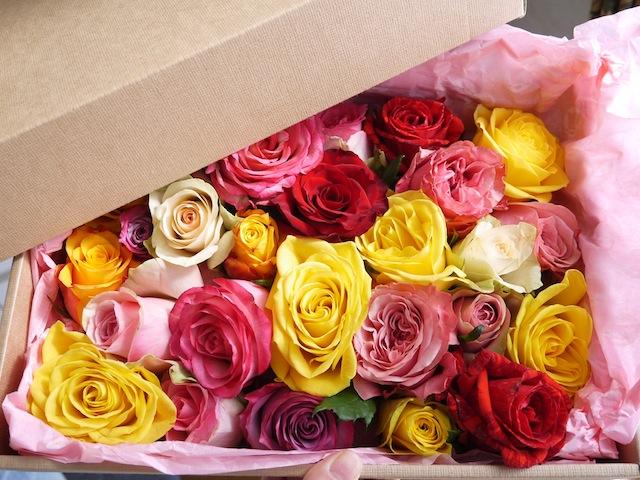 プリンセス気分を味わいたーい! そんなアナタはアフリカの薔薇が 箱いっぱいに贈られてくる「贅沢お姫様セット」なんていかが?