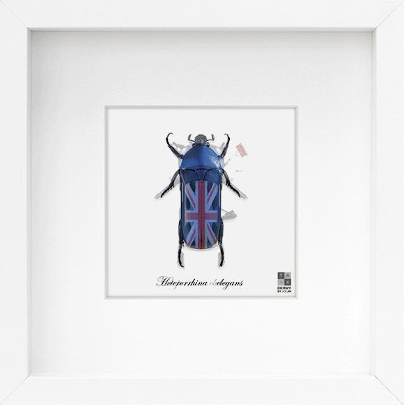 昆虫が車やバイクに!? 見る角度によって姿を変える新感覚アート『Taxi-Dermy』