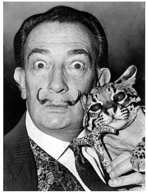 アーティストは猫がお好き! ダリやピカソなど…愛するニャンコたちとのポートレートで見せる素顔が素敵!