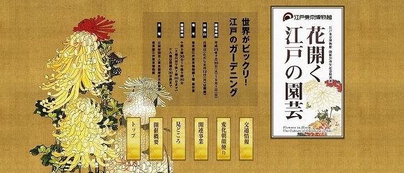 えぇぇぇ~、まじっすかッ!? 20歳のキミたち、「えどはく」に20円で入れるぞ! もう一度言おう、入館料20円だ!!!!!