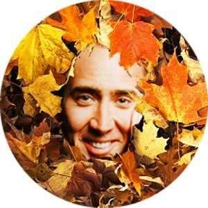落ち葉の中からニコラス・ケイジが微笑みかけるよ!! ファン待望の「ニコラス・アイシャドウ」登場(買えます)