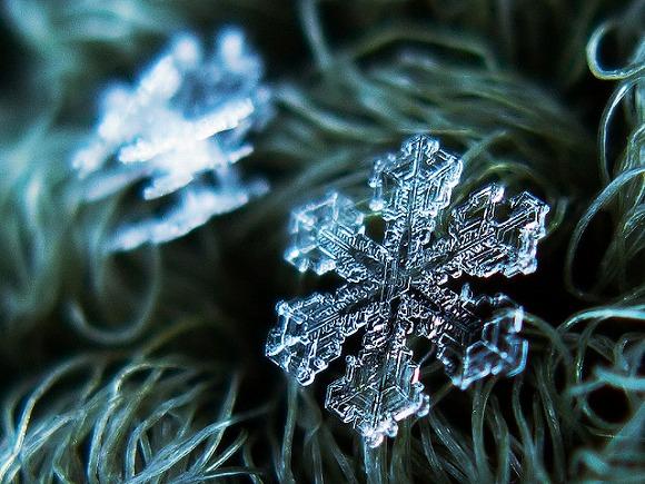 感動必至! これはまさに自然が生んだ芸術作品 / 超接写で撮影したはかなくも美しい「雪の結晶」たち