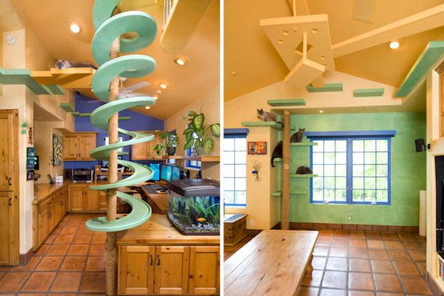 猫用らせん階段&ステップ付き! 360万円かけてリフォームされたニャンコのためのドリームハウス