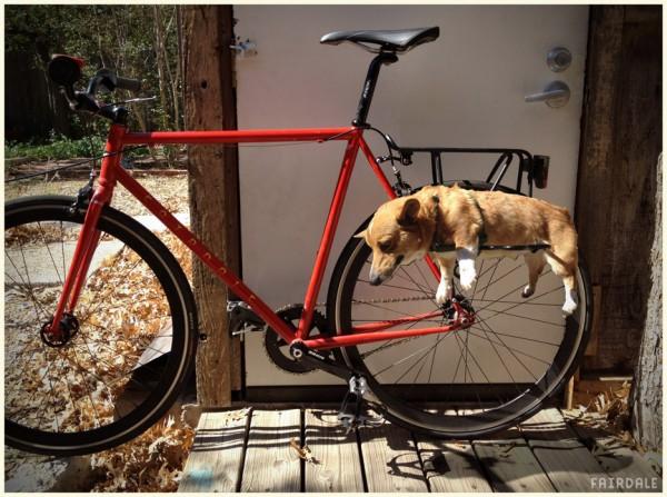 楽チンわんわん運搬機で快適サイクリング!? ワンコを自転車で運ぶための「ドッグ・ラック」とは