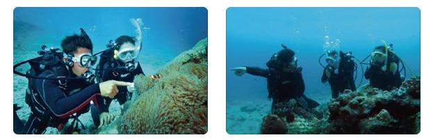 ダイビング中に音声会話が楽しめるなんて画期的! ポケットサイズの水中トランシーバー『ロゴシーズ』