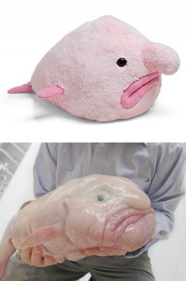 世界で最も醜い生物がぬいぐるみに! あのピンク色の深海魚がキモかわいくなったよ