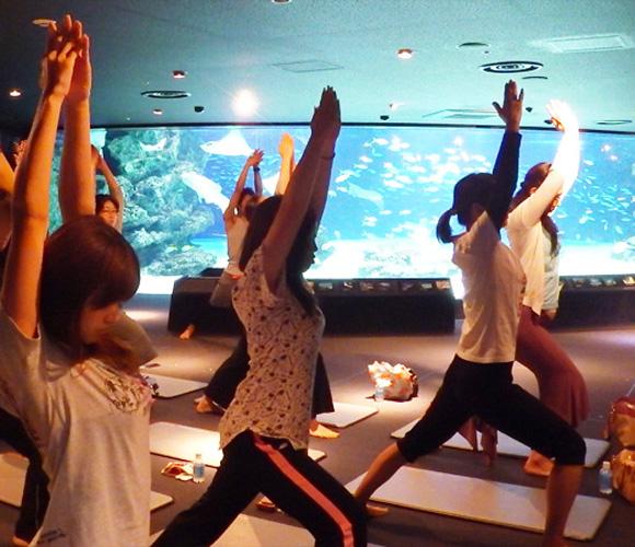 【最高か】 サンシャイン水族館で開催された「水族館ヨガ」が贅沢すぎる! 海の中を自由に浮遊しているような気持ち良さでした