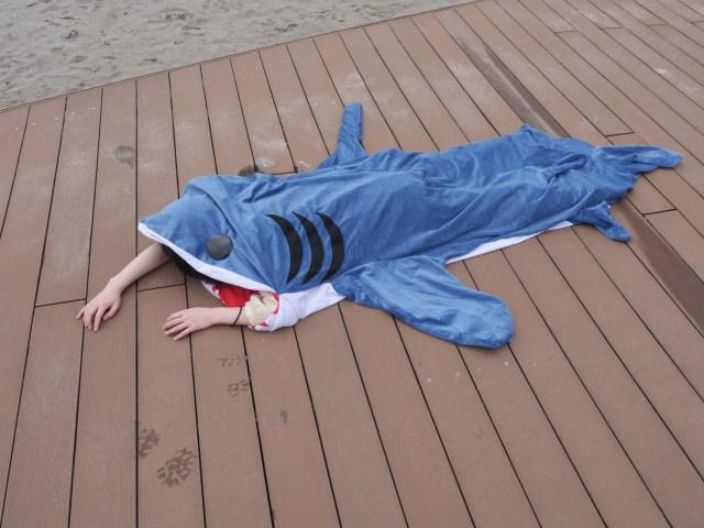 【調査】女性がジョーズ(サメ)に海岸で襲われていたら日本男児は助けてくれるのか in お台場