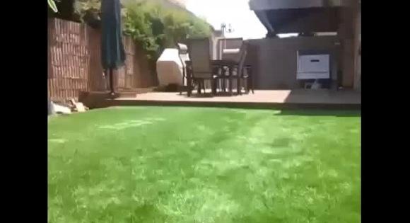 【豪邸動画】この庭の中にプールが隠されているよ! どこにあるのか当ててみて!!