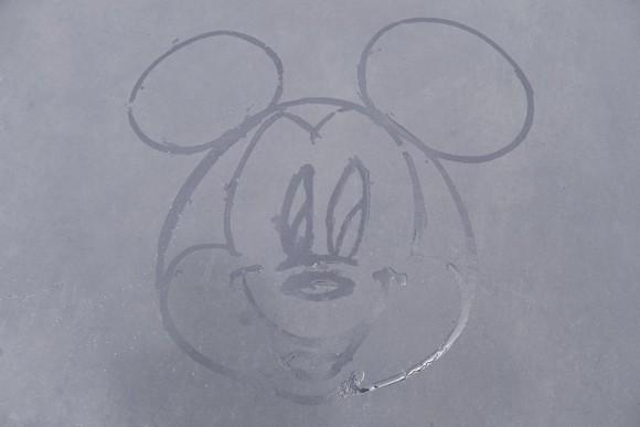 【雨の日ディズニー】全部で約50種類もあるって知ってた!? 地面に絵を描く雨上がりのサプライズ「カストーディアルアート」