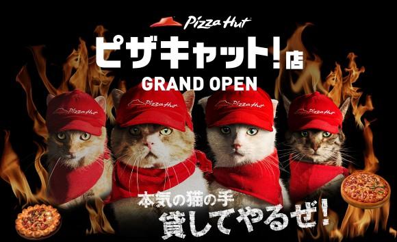 【これはヤバい】ピザハットが猫を従業員にした「ピザキャット」をオープン!? / ツイッターの声「ツボやわ~」「これはオーダーしたくなる」など
