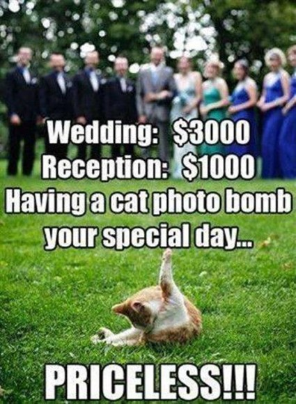 weddingruined1