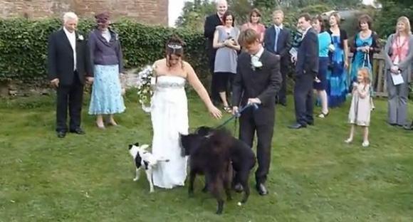 weddingruined18