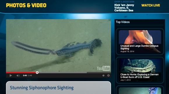 気分は海底二万マイル!? ライブ映像で深海探索を楽しめる「NAUTILUS LIVE」には夢とロマンが溢れてる!