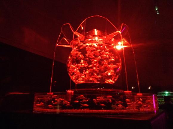 【名古屋&江戸で開催中】金魚たちが光と音楽の中で乱舞する、幻想的な水中世界! アートアクアリウム展に行ってきたよ!