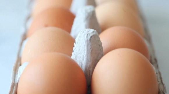 観ているだけでなんだか幸せ! 卵の魅力をたっぷりと詰め混んだ 卵の動画「エッグス」