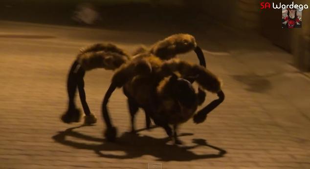 【恐怖】スゴイ勢いで追いかけてくる「蜘蛛イヌ」現る…こんなのが迫ってきたらマジコワイ!!
