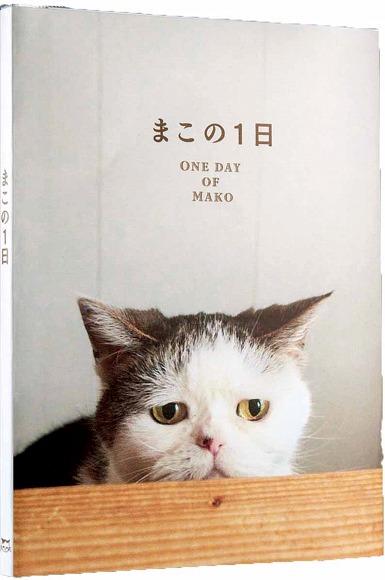 """人気ブログ「まこという名の不思議顔の猫」の """"まこ"""" がフォトブックに! かわいい写真を使ったオリジナル文具4点もセットなの♪"""