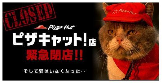 猫が働いていることで話題となった「ピザキャット!店」が緊急閉店していた!/原因はニャンコたちの失踪か