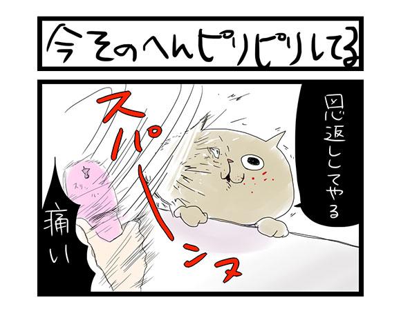 【夜の4コマ部屋】今そのへんピリピリしてる / サチコと神ねこ様 第4回 / wako先生