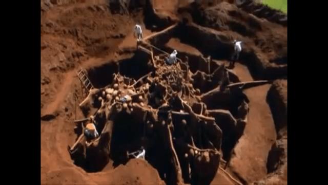 【世界の不思議】蟻の巣にセメントを流し込んで掘ってみると……そこには衝撃的な世界が広がっていた!