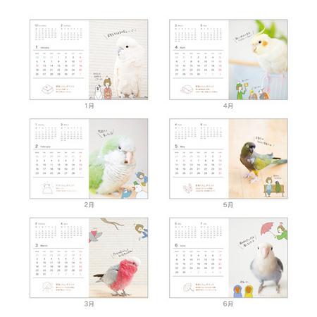 小鳥と触れあえる「ことりカフェ」が「2015年小鳥カレンダーマルシェ」を開催中! インコ・文鳥らキュートな小鳥たちに癒されちゃおう♪