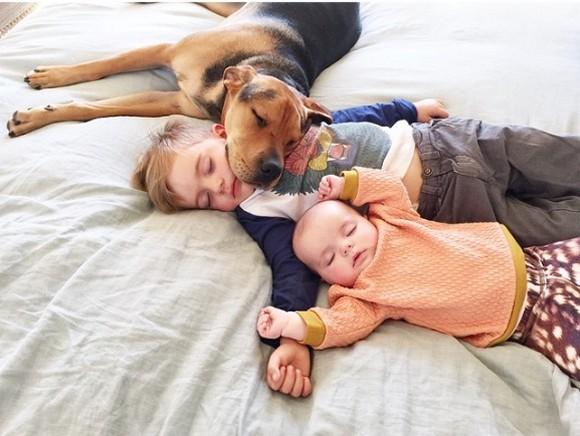 お昼寝姿がかわいすぎる「きょうだい&ワンコ」3人組! Instagramに投稿された写真の数々に世界中がもうメロメロ!!