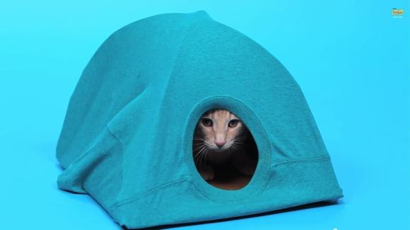 【にゃんこの為のDIY】この材料なら家にあるぞ! ハンガーとTシャツで作る「ネコ用テント」の作りかた