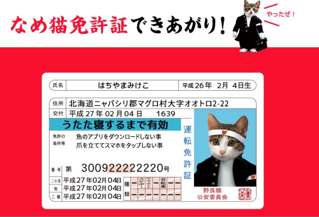 【懐かしすぎる!!】あの『なめ猫免許証』が作れちゃうWebサービスが登場!!