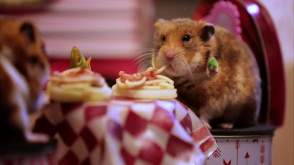"""【リア獣】ハムスターの """"食べまくり"""" デートがかわいい / ネットの声「リア充すぎてムカつく」"""