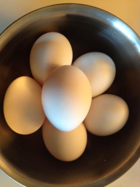 """【検証】一番効率のよい """"ゆで卵"""" のむき方はどれ? 練習ナシ一発勝負で結果を比べてみたよ!!"""