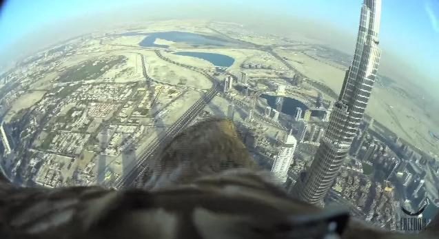 ワシの視点から見るドバイの街が美しい! 世界一の高層ビルから地上へと急降下するまでの2分間映像
