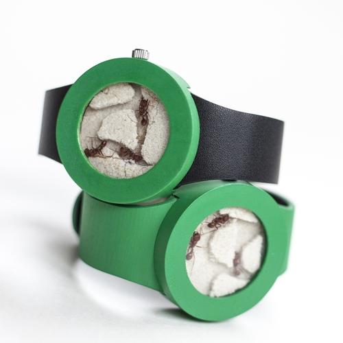 【なぜ作った!?】生きたままのアリが文字盤型ケースの中を動き回る! 腕時計型アクセサリー「アリ時計」が衝撃的