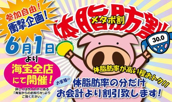 【6月1日から】体脂肪率が割引率に!? 牡蠣と魚の専門店「海宝」でメタボ割キャンペーンを実施!