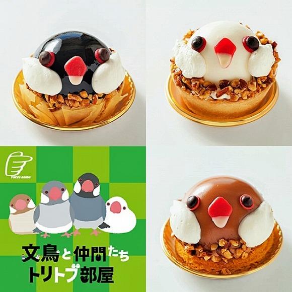 ことりカフェの「文鳥ケーキ」が期間限定で登場してるよ♪ つぶらな瞳でこっちを見ないで…食べられなくなっちゃう!