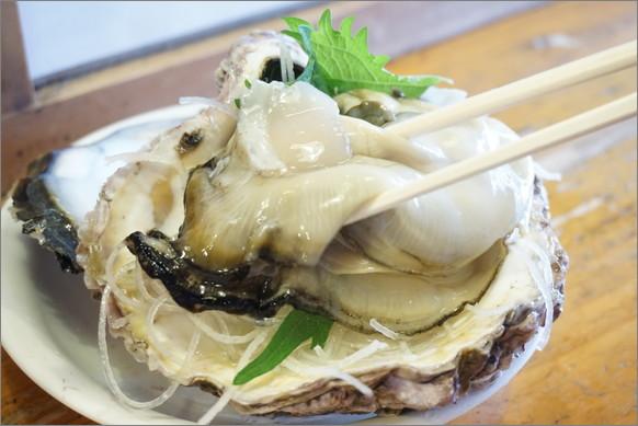 雨の日にこそ訪れたいスポット…それは「伊勢神宮」! ひんやり涼しくて神秘的だよ!! 伊勢志摩の超ビッグな岩牡蠣も堪能できるよ