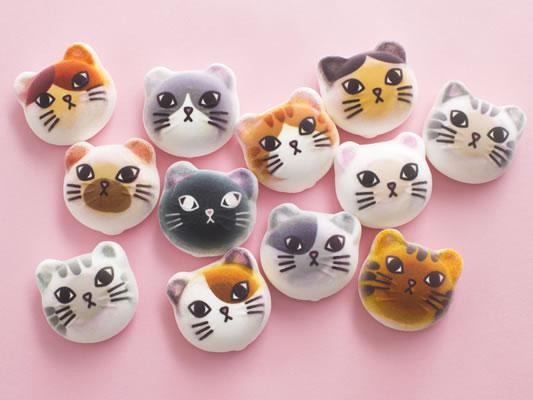 「フェリシモ猫部」の期間限定ショップが「ららぽーとTOKYO-BAY」に登場! 店舗限定販売のモバイルケースも!!