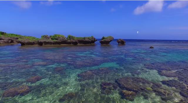 """冷た~い """"コク深"""" ラテを西表島のビーチで楽しむ…臨場感たっぷりのカフェが東京・原宿にやって来る!"""