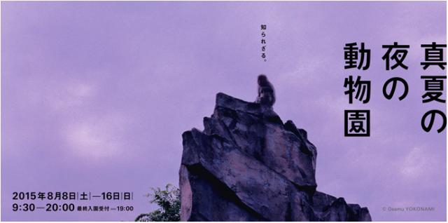 動物たちの夜の姿が垣間見れちゃう! 上野「真夏の夜の動物園」はビアガーデンに音楽ライブなどオトナが楽しめるイベント満載