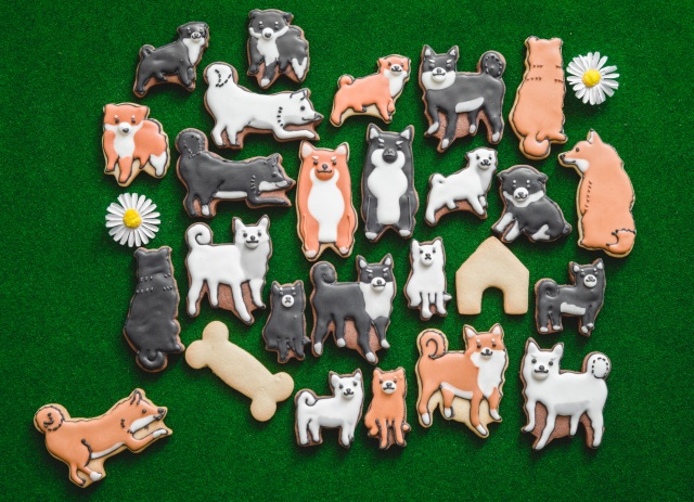 フェリシモから「柴犬」をモチーフにしたアイシングクッキーが登場! か、かわいすぎてこんなの食べられないよッ…!!