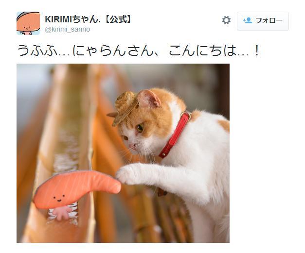 """「美味しそうで、つい……」KIRIMIちゃん.と2代目にゃらんの夢の共演! あやうく """"食われる"""" ところ!?"""