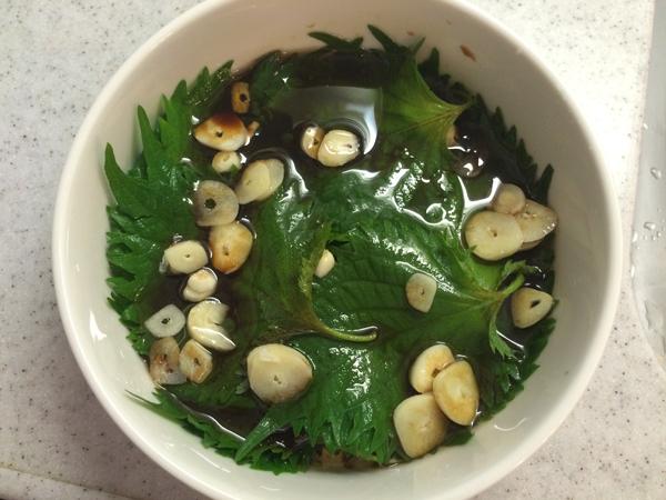 Twitterで話題のハーブ 「SHISO」を使った超簡単レシピ! 本当にヒャッハーできるか実際に作って試してみたよ!!