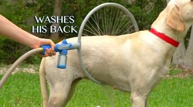 【これは便利】ワンコもゴキゲン! 360℃全方位から水が出る「輪っか状の犬用シャワーホース」